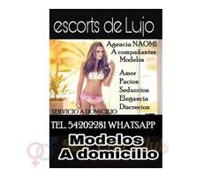 Chicas a domicilio Escorts modelos tel. (502) 54-20-22-81 WhatsApp modelos nacionales y extranjeras