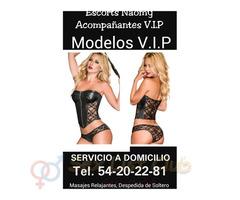A domicilio chicas escorts de lujo modelos V.I.p tel. 54-20-22-81 naomy modelos AAA