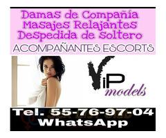 Chicas a domicilio VIP modelos exclusivas Tel 55769704