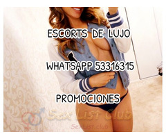 promotion whatsapp 53316315 vip exclusive