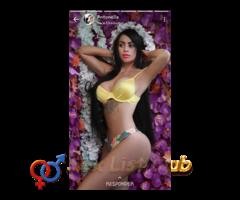 51053433 modelos nacionales y extranjeras las exclusivas de todo Guatemala