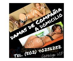 escorts de lujo A domicilio tel. 40256252 fotos por catalogo